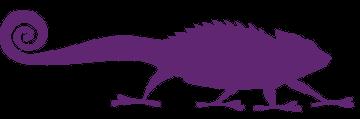Cameleons violet